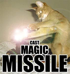 magic missle cat