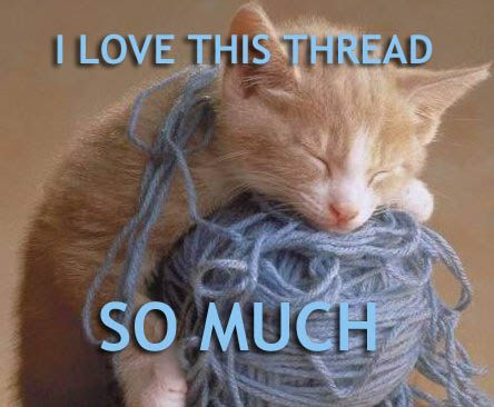 thread cat