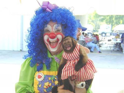 Clown and Monkey