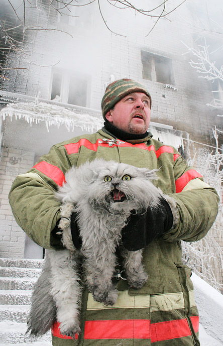 Fireman and cat