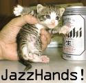 jazz hands cat